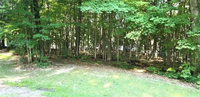 4736 Deer Run Lot #21, Gorham, NY 14561 (MLS #R1285495) :: Thousand Islands Realty
