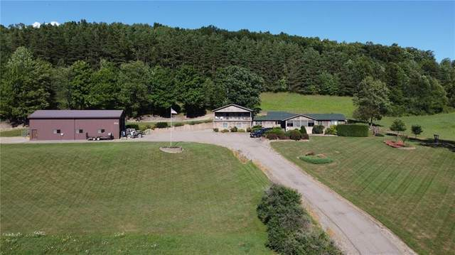 8766 State Route 36, Dansville, NY 14807 (MLS #R1285994) :: BridgeView Real Estate Services