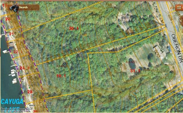 Lot 19.1 Oberon Drive, Genoa, NY 13071 (MLS #R1286254) :: Lore Real Estate Services