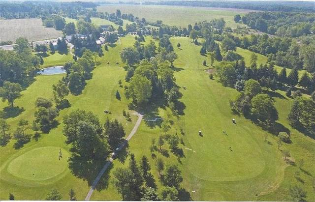 3770 County Line Road, Clarkson, NY 14420 (MLS #R1288180) :: Robert PiazzaPalotto Sold Team
