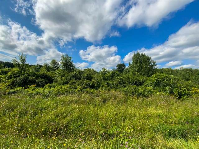 00 Turnpike Rd, Sennett, NY 13021 (MLS #R1290067) :: Thousand Islands Realty