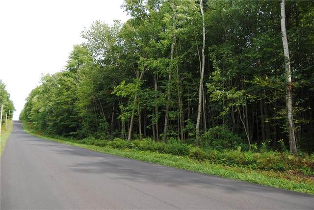 0000 Fintches Corners Road, Sterling, NY 13156 (MLS #R1290235) :: Lore Real Estate Services