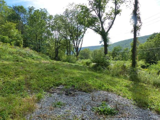 4939 State Route 64, Bristol, NY 14424 (MLS #R1290977) :: Thousand Islands Realty