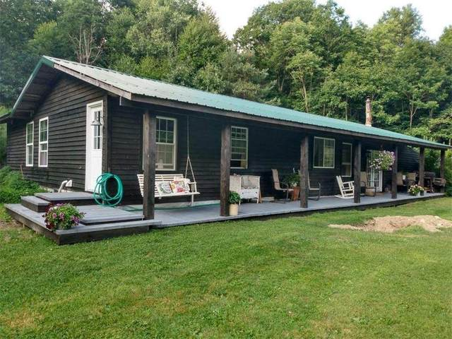 5538 Snowball Hollow Road, Scio, NY 14880 (MLS #R1292113) :: Lore Real Estate Services