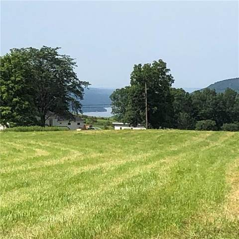 0 County Rt 87 Road, Wayne, NY 14893 (MLS #R1292660) :: Robert PiazzaPalotto Sold Team