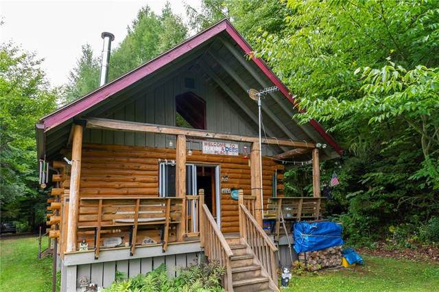 8933 Wildwood Chase, Springwater, NY 14560 (MLS #R1293451) :: Lore Real Estate Services