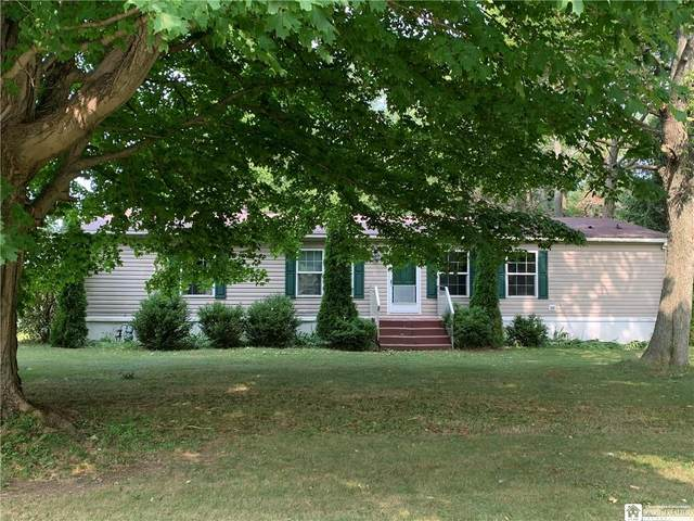 6845 Webster Road, Portland, NY 14787 (MLS #R1294549) :: Lore Real Estate Services