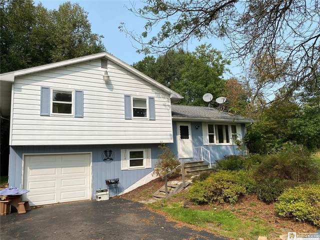 1204 Sherlock Hollow Road, Hinsdale, NY 14743 (MLS #R1294632) :: Lore Real Estate Services