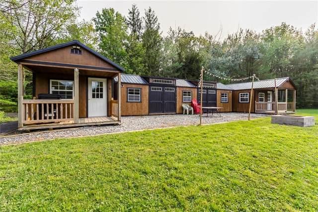 6636 Fisher Tract Drive, Bristol, NY 14424 (MLS #R1294680) :: TLC Real Estate LLC