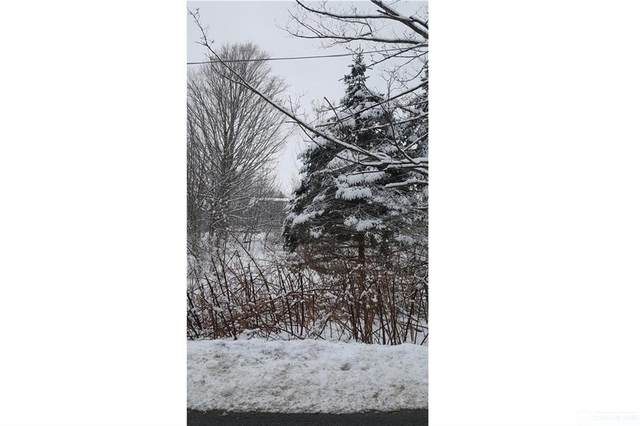 0 Grove Street, Ellicott, NY 14701 (MLS #R1294883) :: Lore Real Estate Services