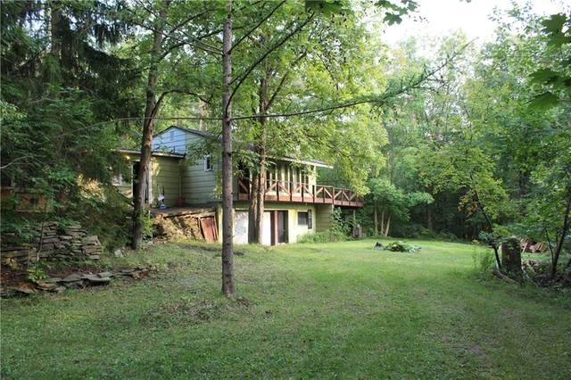 6546 State Route 15A, Canadice, NY 14560 (MLS #R1295189) :: Lore Real Estate Services