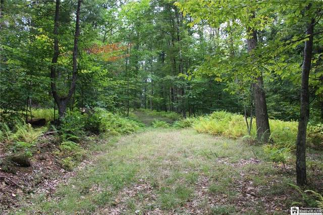 7788 Willow Brook Road, Bolivar, NY 14754 (MLS #R1295277) :: Lore Real Estate Services