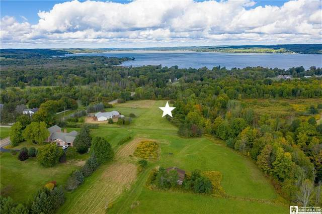 0 Big Tree Rd, Busti, NY 14750 (MLS #R1295374) :: Lore Real Estate Services