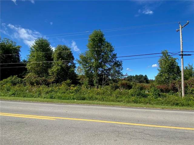 00000 Fourth Section Rd, Clarendon, NY 14470 (MLS #R1295499) :: Lore Real Estate Services