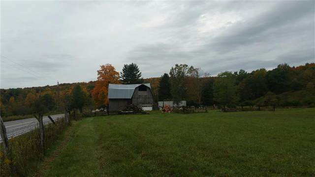 7171 County Route 333, Thurston, NY 14821 (MLS #R1296596) :: MyTown Realty