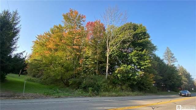 0 Abbey Road, Ellicott, NY 14701 (MLS #R1296738) :: MyTown Realty