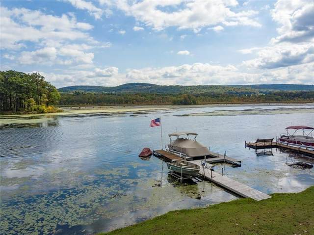 0 West Lamoka Lake Road, Orange, NY 14815 (MLS #R1298048) :: BridgeView Real Estate Services