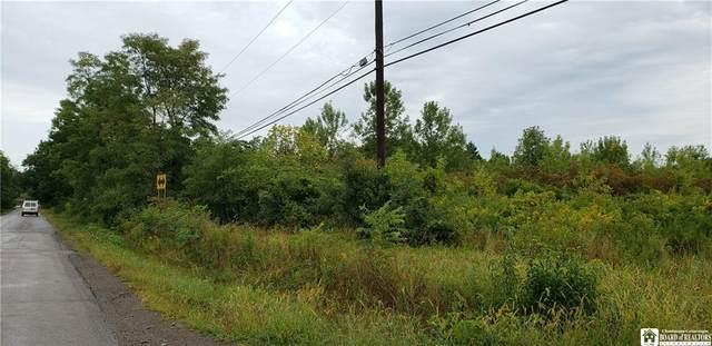 0 Bebee Road, Hanover, NY 14081 (MLS #R1298975) :: MyTown Realty