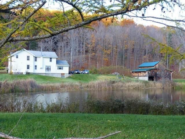1369 Italy Valley Road, Italy, NY 14512 (MLS #R1299414) :: BridgeView Real Estate Services