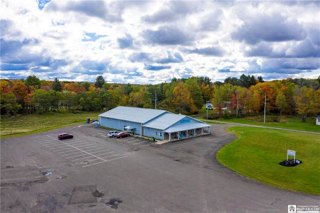 2118 Magnolia Avenue, North Harmony, NY 14710 (MLS #R1300398) :: MyTown Realty