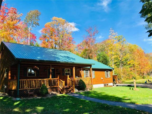 6053 Filmore Rd Road, Sempronius, NY 13118 (MLS #R1300509) :: Thousand Islands Realty