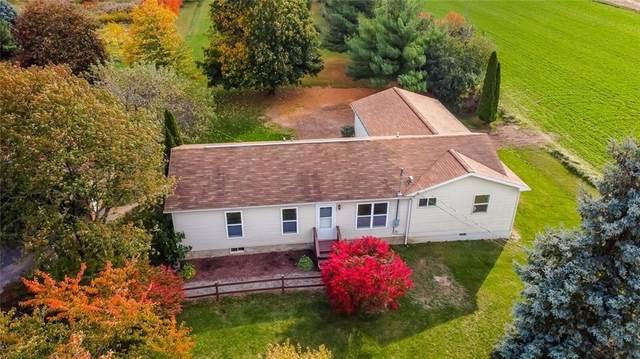 2177 Trimble Road, Phelps, NY 14432 (MLS #R1301001) :: Thousand Islands Realty