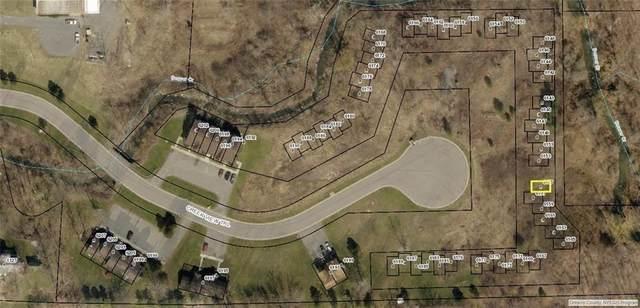 6189 Creek View, Farmington, NY 14425 (MLS #R1301092) :: MyTown Realty