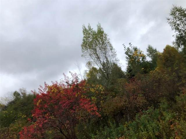 0 State Route 104 A, Sterling, NY 13156 (MLS #R1302095) :: BridgeView Real Estate Services