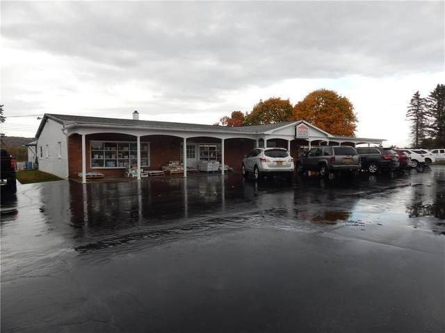 11851 State Route 15, Wayland, NY 14572 (MLS #R1302840) :: MyTown Realty