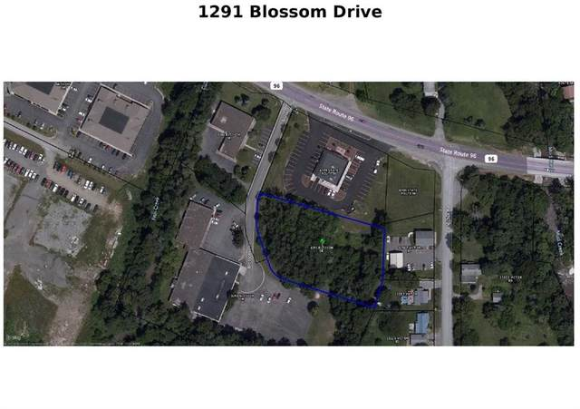 1291 Blossom, Victor, NY 14564 (MLS #R1303151) :: Thousand Islands Realty
