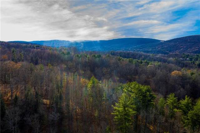 0 State Route 14, Montour, NY 14865 (MLS #R1303294) :: TLC Real Estate LLC