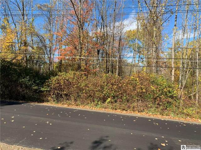 0 Mapleview Avenue N, Busti, NY 14750 (MLS #R1303346) :: MyTown Realty