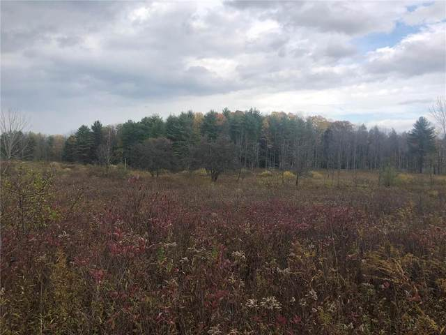0 Spring St Extension, Groton, NY 13073 (MLS #R1305113) :: BridgeView Real Estate Services