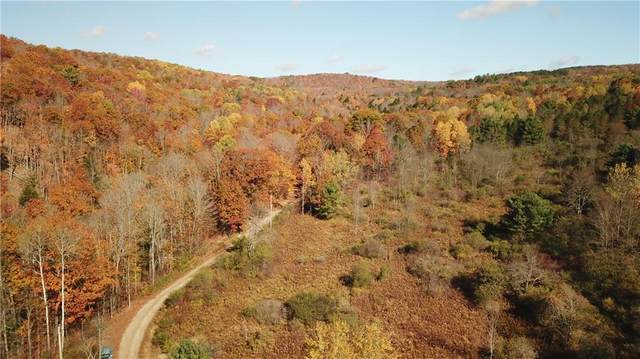 00 Ruttin Road Road, Scio, NY 14880 (MLS #R1305205) :: Robert PiazzaPalotto Sold Team