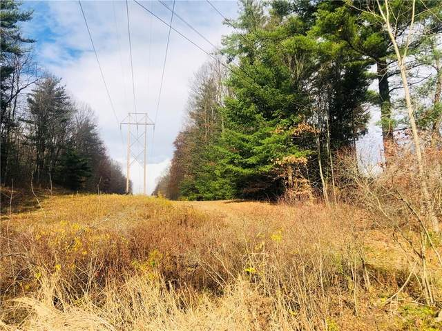 0 Geiger Road, Ossian, NY 14437 (MLS #R1307322) :: 716 Realty Group