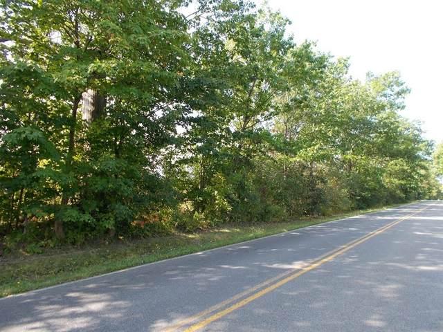 00 Noble Road, Seneca Falls, NY 13148 (MLS #R1308771) :: Mary St.George | Keller Williams Gateway
