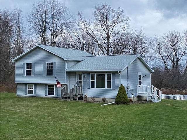 4294 State Route 364, Potter, NY 14527 (MLS #R1309316) :: Robert PiazzaPalotto Sold Team