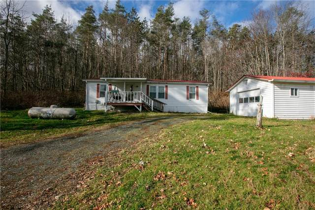10109 State Route 53, Prattsburgh, NY 14873 (MLS #R1309647) :: BridgeView Real Estate Services