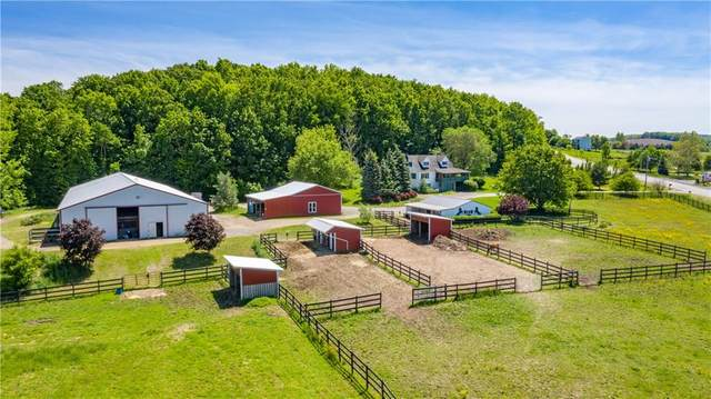3301 Hopkins Road, Canandaigua-Town, NY 14424 (MLS #R1309882) :: Robert PiazzaPalotto Sold Team