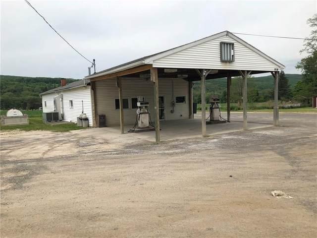 8138 S Main Street, Springwater, NY 14560 (MLS #R1310568) :: TLC Real Estate LLC