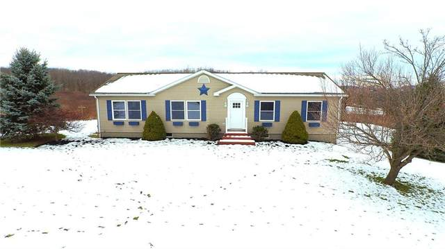 4050 Toneison Road, Bristol, NY 14469 (MLS #R1313509) :: TLC Real Estate LLC