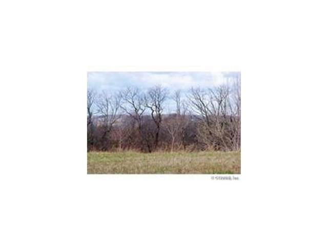 1 Quail Run, Greece, NY 14468 (MLS #R1313910) :: Lore Real Estate Services