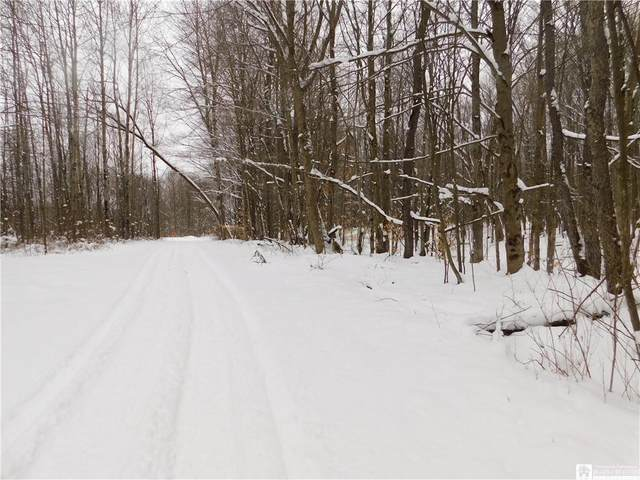 0 S Mead Road, Busti, NY 14701 (MLS #R1316164) :: TLC Real Estate LLC