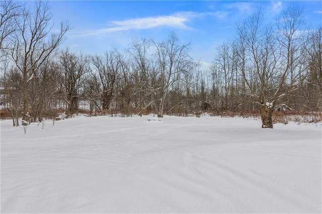 2898 State Route 88 N, Arcadia, NY 14513 (MLS #R1317045) :: 716 Realty Group