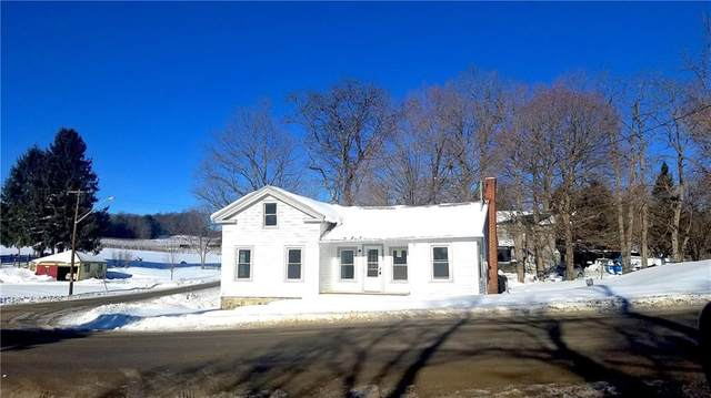 9187 County Route 74, Pulteney, NY 14874 (MLS #R1317631) :: MyTown Realty