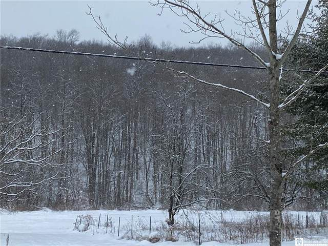 0 Bone Run Road, South Valley, NY 14738 (MLS #R1318860) :: MyTown Realty