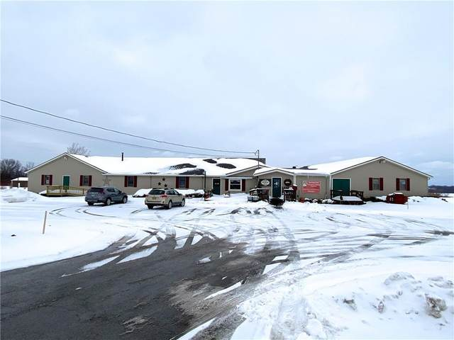 6900 State Route 5 & 20 Road, East Bloomfield, NY 14469 (MLS #R1319997) :: 716 Realty Group