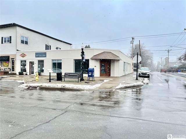102 Chautauqua Avenue, Busti, NY 14750 (MLS #R1320531) :: 716 Realty Group