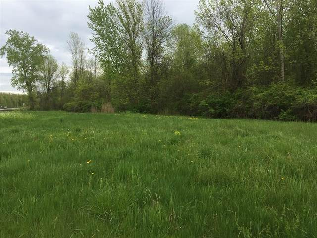 0 Route 104, Sodus, NY 14551 (MLS #R1326108) :: Thousand Islands Realty