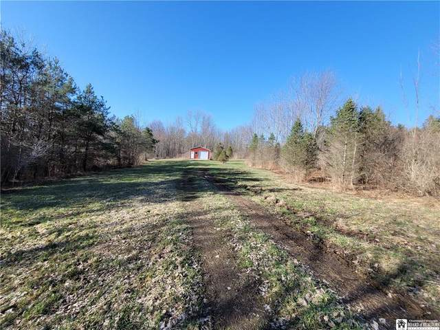 0 28th Creek Road, Gerry, NY 14740 (MLS #R1326276) :: MyTown Realty